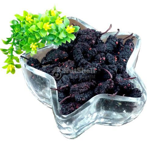Dried Mulberry (Thailand)